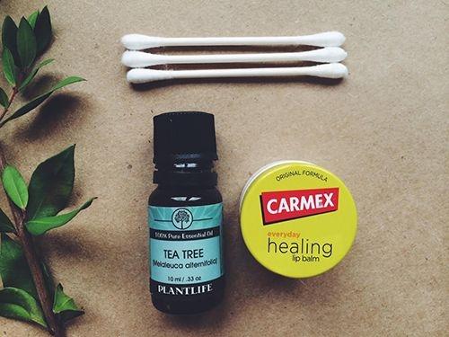 1 số tác dụng của tràm trà đối với da mụn 3