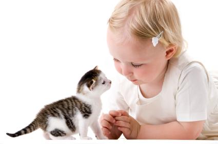 Thú cưng giúp trẻ tự kỷ giảm lo âu