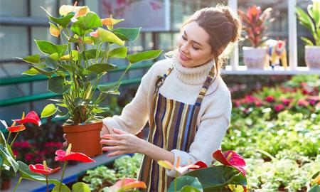 Làm vườn – phương pháp điều trị bệnh thần kinh từ thời Ai cập cổ đại