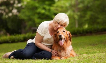 Đặc điểm gene lý giải vì sao loài chó gần gũi với con người