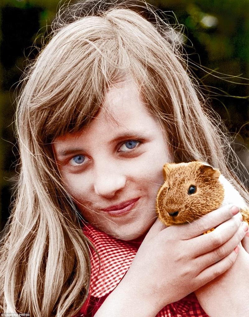 Mẹ của Diana nói rằng cô ấy yêu mọi thứ nhỏ và lông thú và ở đây cô ấy, khoảng mười tuổi, với một con chuột lang
