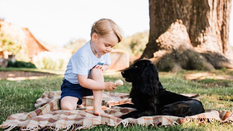 Hoàng tử George cười toe trong ảnh chân dung mừng sinh nhật