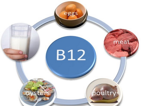 vitaminb12sources