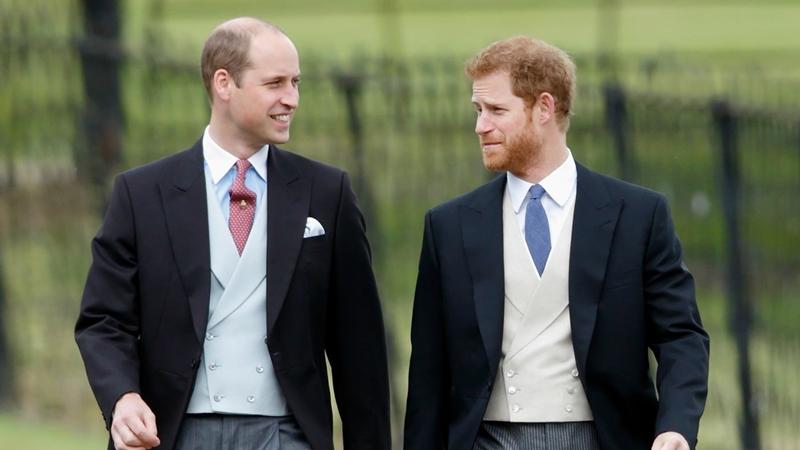 Hoàng tử Harry cùng anh trai - hoàng tử William