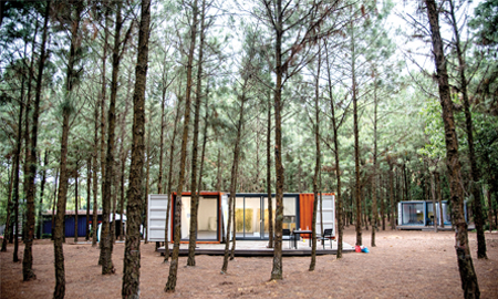 Nhà trong rừng