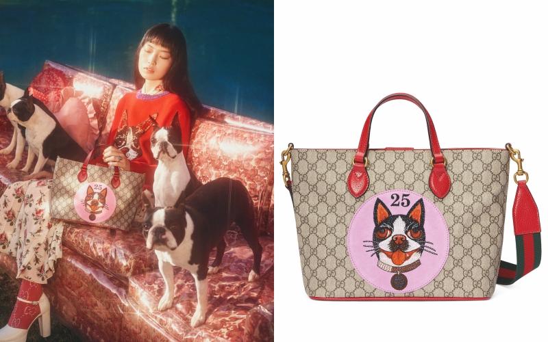 Túi xách Gucci với chất liệu canvas mang logo đặc trưng đi cùng với quai xách, quai đeo vô cùng nổi bật.