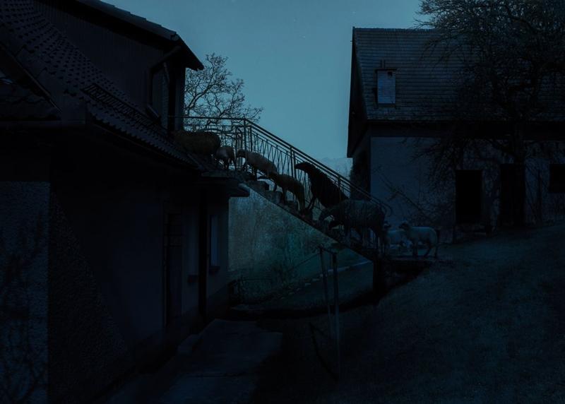 """Hạng mục hình ảnh đã chỉnh sửa: """"Stairs"""" của tác giả Adam Żądło"""