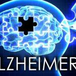 Tập thể dục không giúp đẩy lùi tiến trình suy giảm trí nhớ