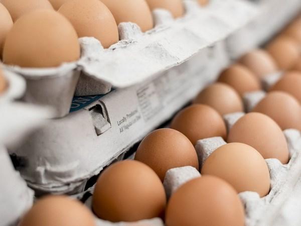 """Trứng không phải """"kẻ thù"""" đối với người mắc bệnh tiểu đường"""