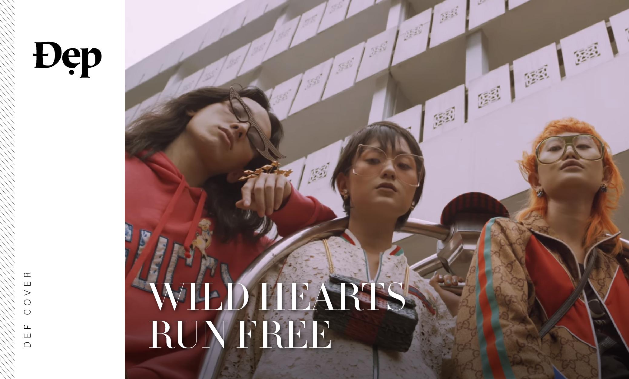 {Đẹp Cover} WILD HEARTS RUN FREE ft. TRANG BÙI