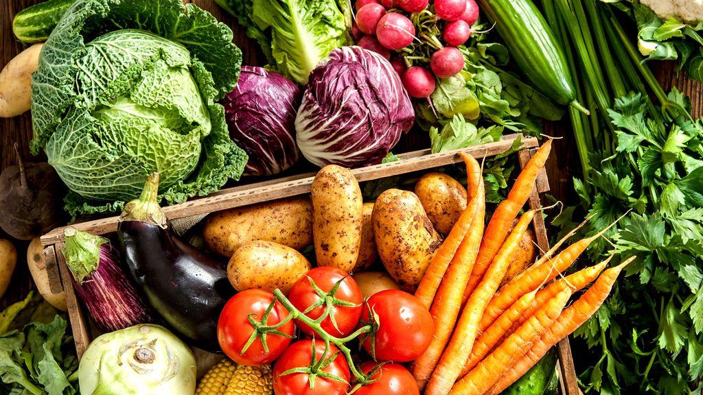 http-prod-static9-net-au-_-media-network-images-2017-07-25-10-55-170725_coach_vegetables