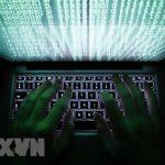 Luật An ninh mạng: Những thông tin bị nghiêm cấm và hình thức xử lý
