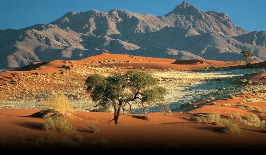 """Namibia – vẻ đẹp hoang dã của vùng đất """"Mad Max: Fury Road"""""""