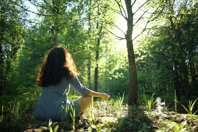 Trải mình với tự nhiên là làm tăng chức năng nhận thức.