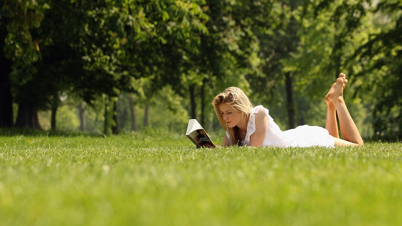 Nếu không thể vào rừng, hãy tìm bất cứ nơi nào có cây cối như công viên hoặc vườn.