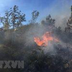 Nghệ An: Nắng đỉnh điểm, người đàn ông bị thiêu cháy khi dập lửa