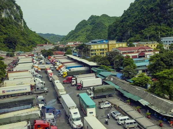 Việt Nam trở thành bạn hàng lớn nhất của Trung Quốc trong ASEAN