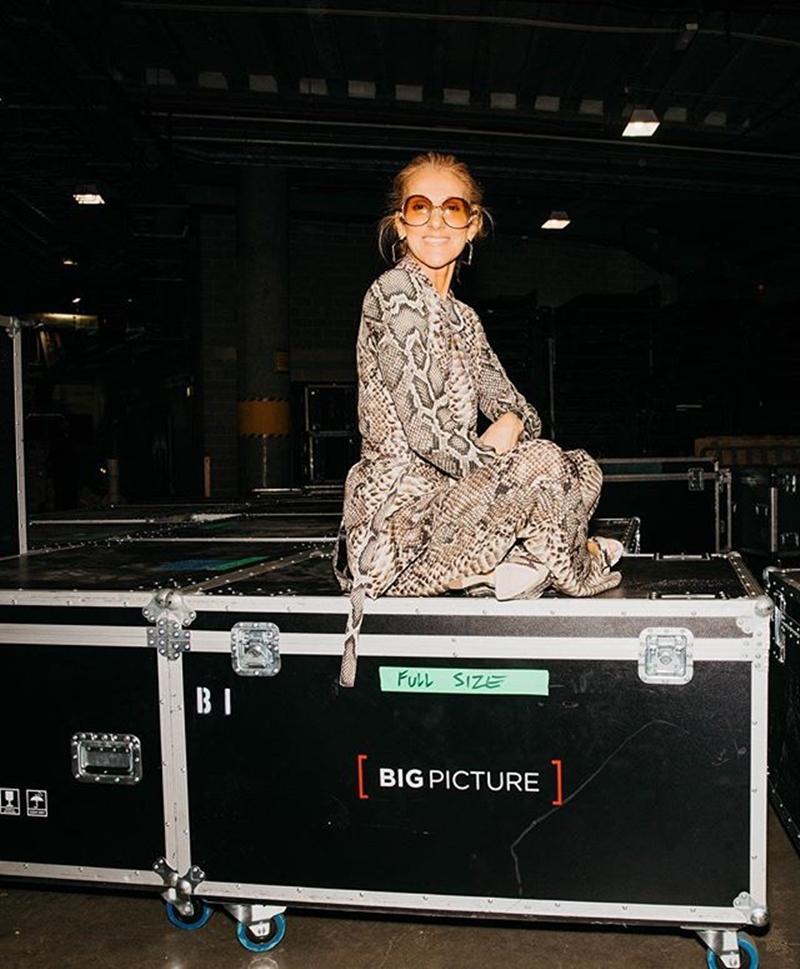 """Không ngần ngại thử nghiệm những phong cách hầm hố, Celine Dion còn tự tin diện bộ suit họa tiết da trăn đến từ thương hiệu Elie Saab đình đám, cùng với một chiếc kính mát """"sang chảnh"""" của Balenciaga."""