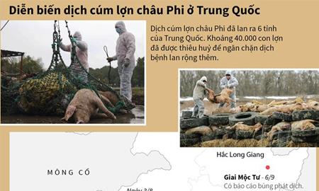 [Infographics] Diễn biến dịch cúm lợn châu Phi ở Trung Quốc