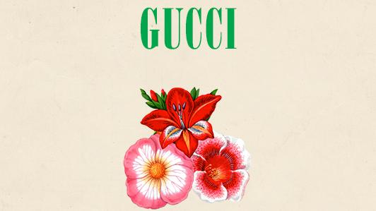 {LIVESTREAM} Show Gucci Xuân Hè 2019 trực tiếp từ Paris lúc 00:30 ngày 25/09