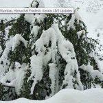 Đã tìm thấy 50 phượt thủ bị mất tích do mưa tuyết ở Ấn Độ