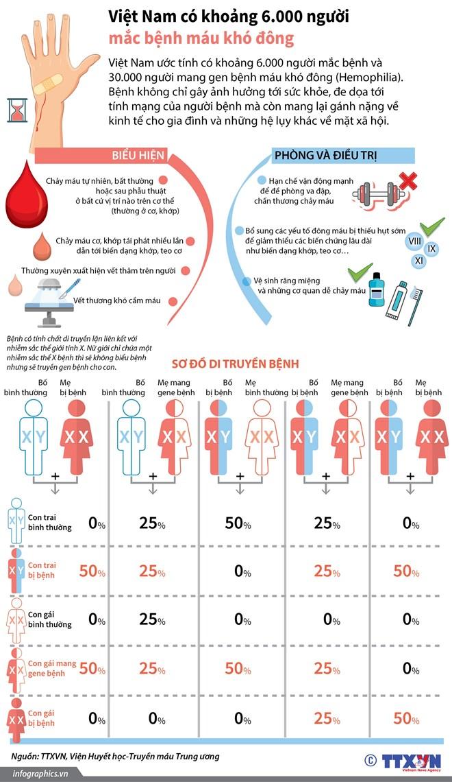 infographics_mau_kho_dong