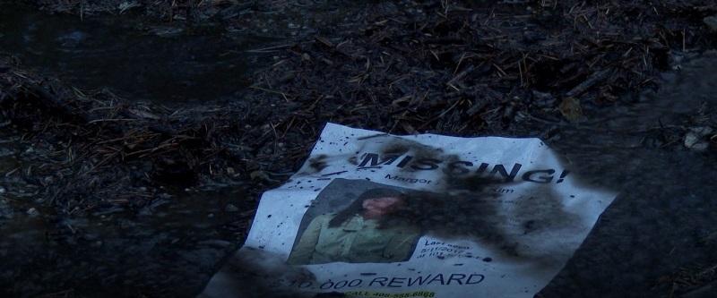 Câu chuyện bắt đầu khi cô con gái Margot Kim đột ngột biến mất