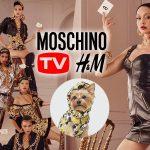"""H&M bắt tay Moschino ra mắt BST """"sang chảnh"""" và có cả đồ cho thú cưng"""