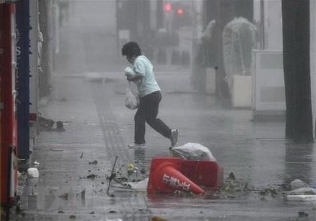 Nhật Bản: Hơn 700 người tại Okinawa phải sơ tán do bão Trami
