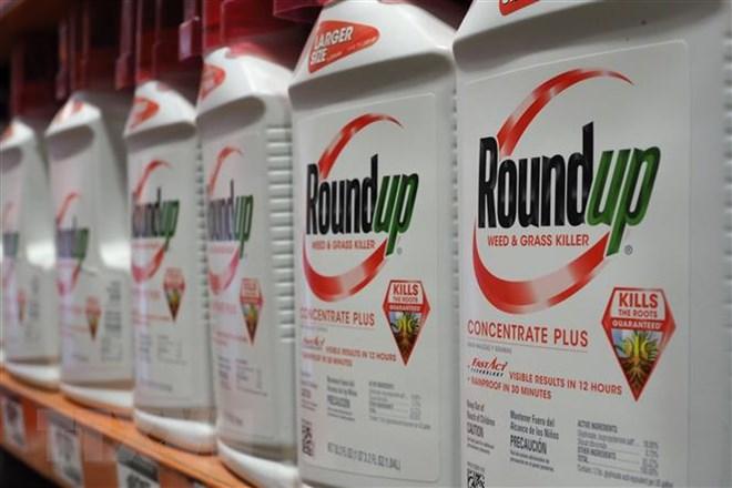Cân nhắc giữ nguyên án phạt 289 triệu USD dành cho Monsanto