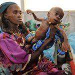 Dự báo chấn động: Có thể sắp xảy ra một nạn đói trên quy mô toàn cầu