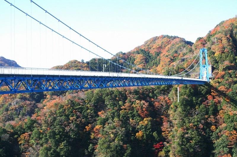 Độ cao từ cầu đến mặt nước là 100m, du khách có thể chơi nhảy Bungee từ trên cầu xuống để nếm thử cảm giác mạo hiểm hơn cả trong tưởng tượng.