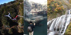 Fukushima – Nơi sự sống hồi sinh