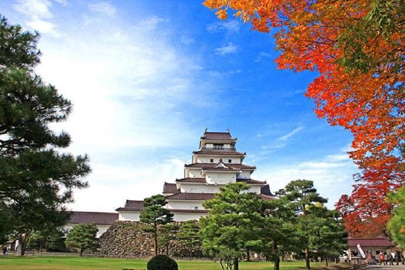 suruga trở thành điểm du lịch hấp dẫn. Nét cổ kính của lâu đài hòa cùng vẻ đẹp của màu lá phong ánh đỏ, tạo nên bức tranh thơ mộng đến khó tin.