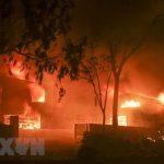 Mỹ: Tìm thêm được 6 thi thể trong vụ cháy rừng ở California
