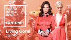 """Pantone công bố cam san hô là """"Color of The Year"""", thống trị năm 2019"""