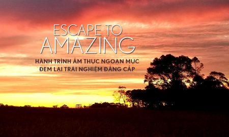 Escape to Amazing: Hành trình ẩm thực ngoạn mục đem lại trải nghiệm đẳng cấp