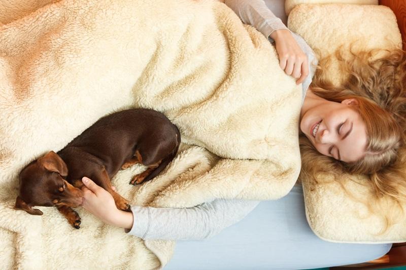 Giải pháp mới dành cho những cô nàng thiếu ngủ: Hãy ôm một chú chó!