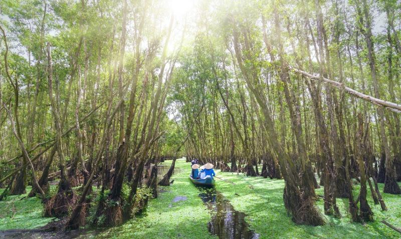 """Đến An Giang là bạn tha hồ có những bức hình """"so deep"""" giữa những rừng tràm xanh um tùm, chèo thuyền đi thong dong khám phá những cánh đầm lầy hay kênh mương siêu đẹp như vầy."""
