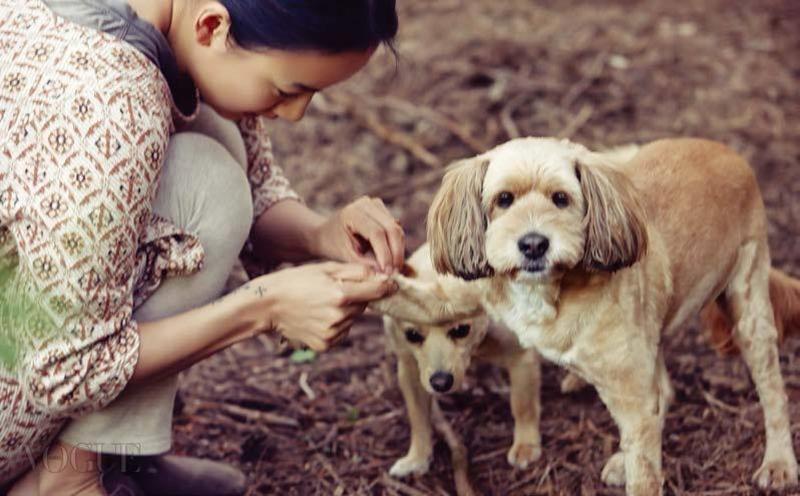 Rời bỏ hào quang danh vọng, với nhiều người là nuối tiếc nhưng riêng Lee Hyori, đó là sự đánh đổi xứng đáng. 5 năm qua, cô cùng người đàn ông mình yêu sống giản dị trong căn nhà nhỏ, trồng cây, làm gốm, nuôi thêm bầy chó tận hưởng cuộc sống thanh bình ở đảo Jeju.