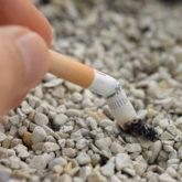 Trường đại học Nhật Bản từ chối tuyển dụng giảng viên hút thuốc lá