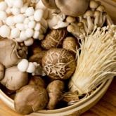 Ăn nấm đều đặn có thể làm giảm 50% nguy cơ suy giảm nhận thức