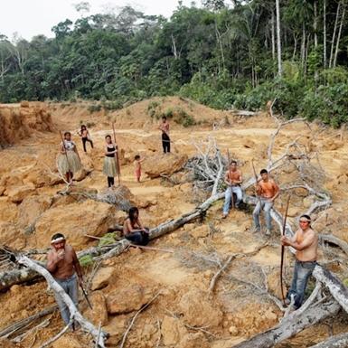 """Cháy rừng Amazon và những sự thật đáng kinh ngạc ít người biết về """"lá phổi xanh"""" của hành tinh"""