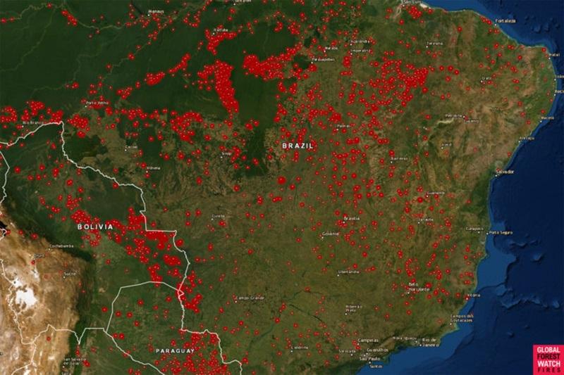 Đừng lo khi không thể trực tiếp chữa cháy rừng Amazon, đây