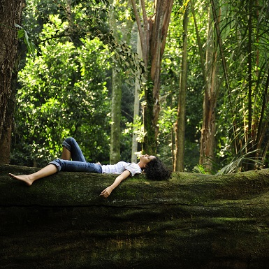 """Bạn biết gì về """"tắm rừng"""" – phương pháp chữa bệnh độc, lạ?"""