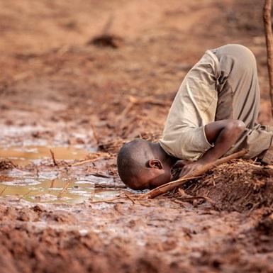 """Loạt ảnh """"khủng hoảng bền vững"""" 2019: năm của những hậu quả khủng khiếp từ biến đổi khí hậu"""