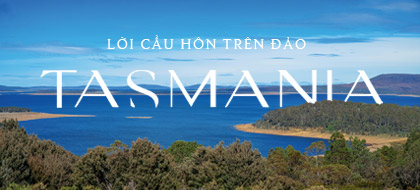 Lời cầu hôn trên đảo Tasmania