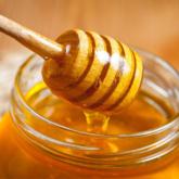 Sinh viên Israel nghiên cứu và sản xuất loại mật không cần ong