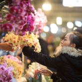 Chợ hoa Quảng Bá nhộn nhịp trong những đêm cuối năm