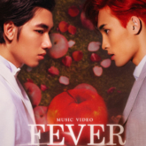 mv fever - featured image